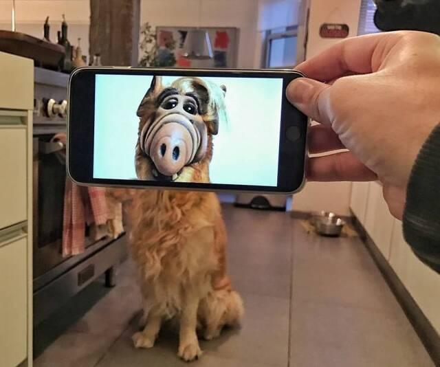 Coole Fotos mit dem Smartphone #2