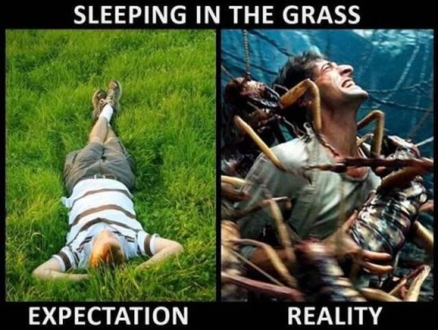Erwartung vs. Realität #3