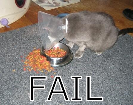 fail-07.jpg