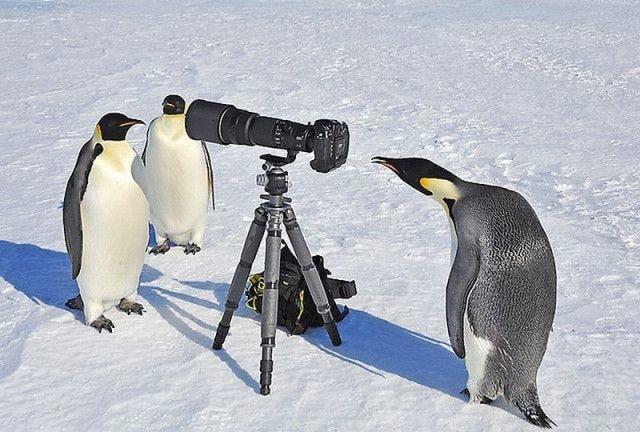 Bildschirmarbeiter Picdump 04.02.2011
