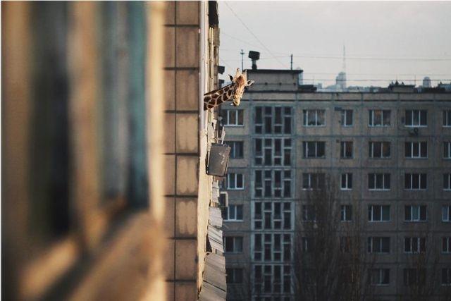Bildschirmarbeiter - Picdump 12.08.2011