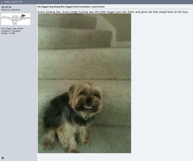 Bildschirmarbeiter - Picdump 19.08.2011