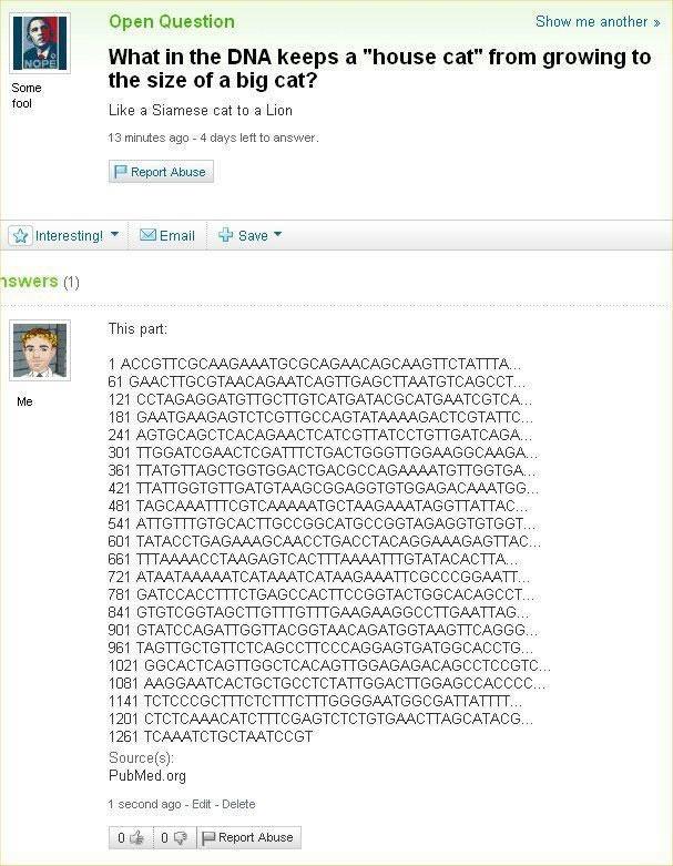 Bildschirmarbeiter - Picdump 02.09.2011