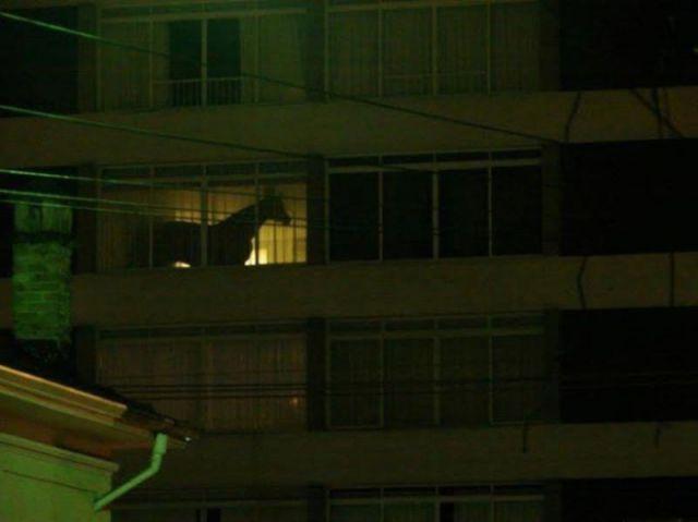 Bildschirmarbeiter - Picdump 23.03.2012