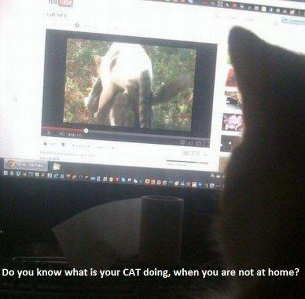 Bildschirmarbeiter - Picdump 13.04.2012