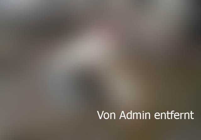 Bildschirmarbeiter - Picdump 20.05.2016