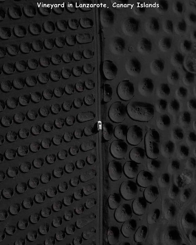 Bildschirmarbeiter - Picdump KW34 2021