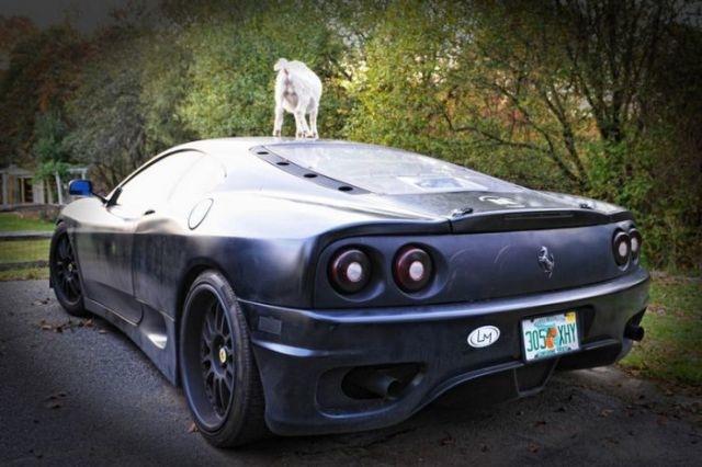 Spass auf Ferrari