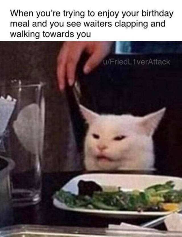 Stop Yelling At The Cat! - Memes