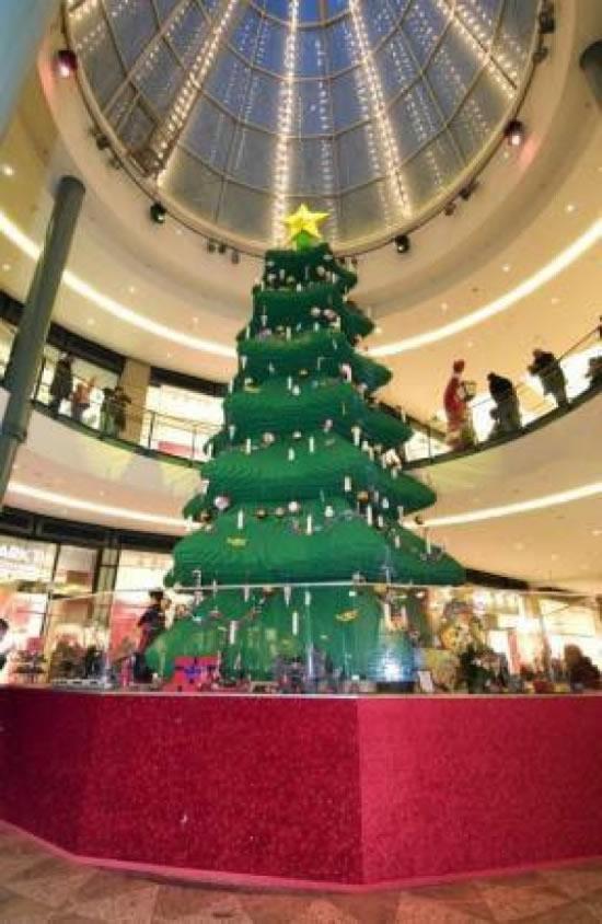 Weihnachtsbäume 2008